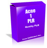 Thumbnail Acne 1 PLR  10 Articles on Acne