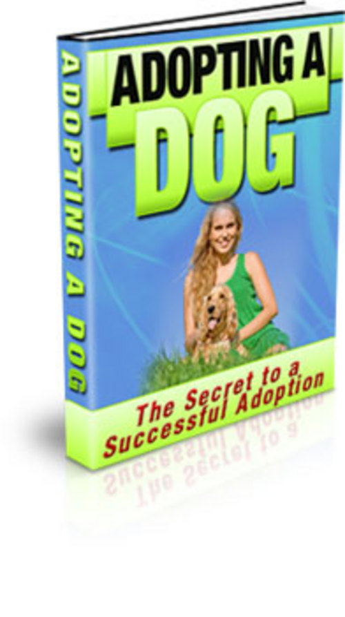 Product picture How to Adopt a Dog - with Private Label Rights + BONUS