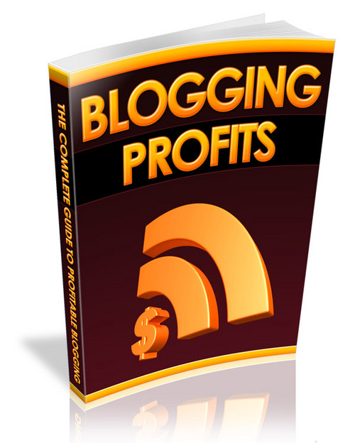 Product picture Blog Traffic Strategies - with an UNANNOUNCED BONUS!