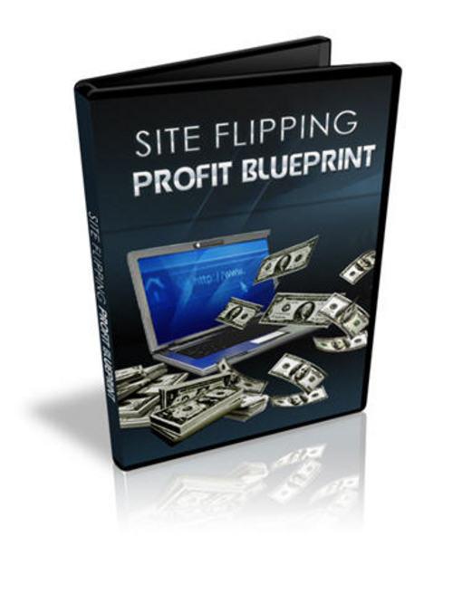 Product picture Site Filpping Profit Blueprint Video Course - with BONUS!